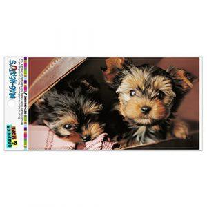 Graphics and More Yorkie Yorkshire Terrier Hunde Welpen im Koffer Koffer Automotive Car Kühlschrank Locker Vinyl Magnet