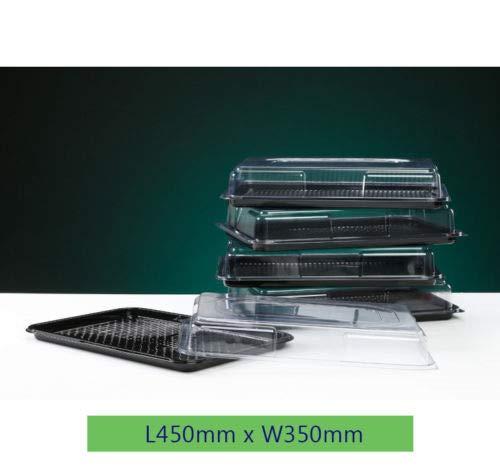5x Medium Kunststoff Buffet Catering Party Lebensmittel/Sandwich Servierplatte Tabletts (mit Deckel)