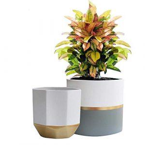 Blumentöpfe Keramik – 2er Set Weiße Sukkulente Kaktus Töpfe Pflanzenkübel 16.5cm, für Innen Golden und Grau Verzierung