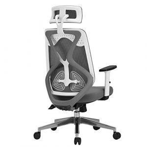 ADHKCF Ergonomische Mesh Swivel Executive Bürostühle Hohe Rückenlehne Hochleistungscomputer Schreibtisch Stuhl Verstellbare Kopf- und Armlehne (Farbe : Weiß)