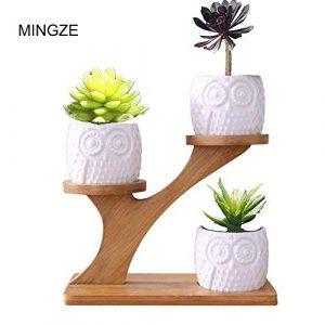 MINGZE Blumentöpfe, 3er Pack Eule sukkulente keramische Pflanzentöpfe für Home-Office-Schreibtisch (mit Holzständer), saftige Kombination Topfblumentopf, saftiger Keramiktopf