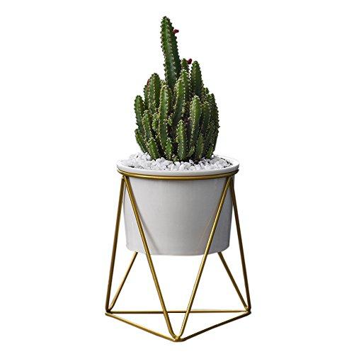 CatcherMy Keramischer Blumentopf mit Geometrische Metall Pflanzenständer Dreieckige Ständer Halter für Wohnzimmer/Schreibtisch - ⌀ 11 cm - Moderner minimalistischer Stil