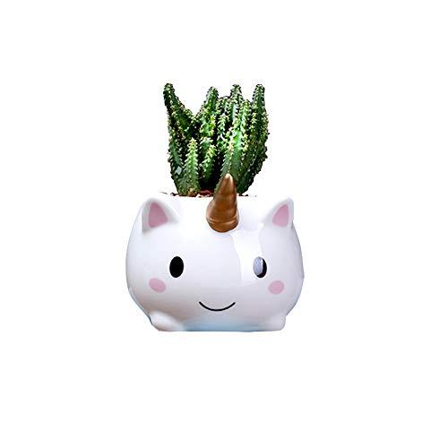 MengCat Einhorn-Pflanztöpfe, niedliche Tier-Form-Cartoon Sukkulenten-Vase, Blumentöpfe, Behälter, Heimdekoration, Blumentöpfe, Schreibtisch Mini-Ornament